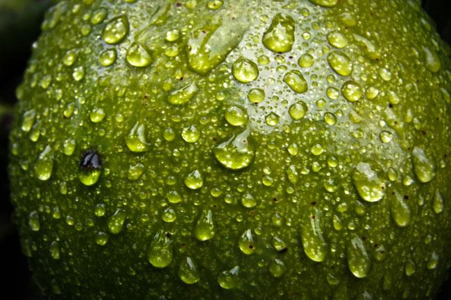 Aceite Vegetal puro de Cosmética Natural 100x100