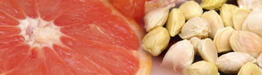 Semillas de pomelo es un conservante natural