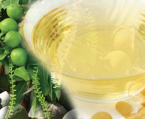 Aceite de Macadamia de primera presión